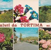 Tortima – cartolina (contrada Busa nelle due foto in alto)